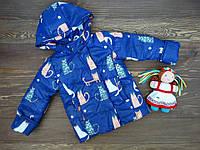 """Детская демисезонная курточка """"Котики"""" для девочки темно-синяя р.92-110"""