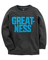 Реглан Carters на мальчика 4-8 лет Long-Sleeve Flocked Greatness
