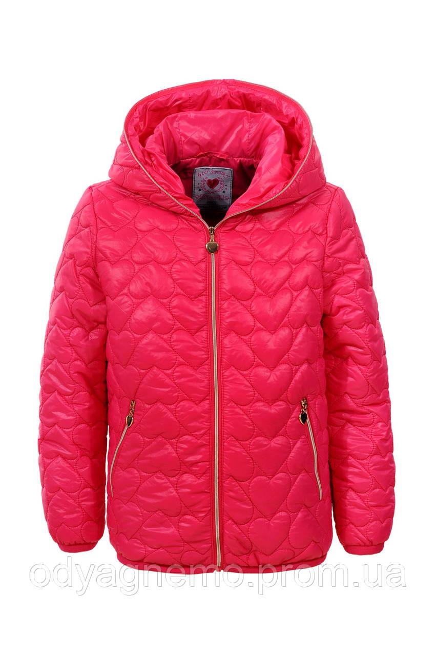 Курточка для девочек Glo-Story оптом, 92/98-128 рр.