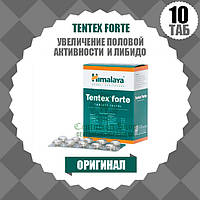 TENTEX FORTE (ТЕНТЕКС ФОРТЕ) | Для лечения мужской сексуальной дисфункции