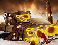 Евро комплект постельного белья XHY10