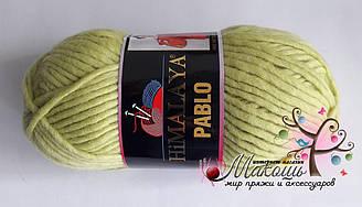 Пряжа Пабло Pablo Himalaya, № 123-18, салат