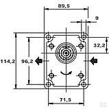 Шестеренный насос серия Polaris PLP2020D082E2 Pump PLP20.20D0-82E2-LEB/EA-N CASAPPA, фото 3