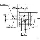 Шестеренный насос серия Polaris PLP2020D082E2 Pump PLP20.20D0-82E2-LEB/EA-N CASAPPA, фото 5