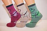 Махровые женские носки стиль люкс Ж30, фото 1