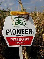 PR39G83 PIONEER ФАО 230