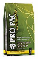 Сухий корм для собак Pro Pac Large Breed Puppy Chicken & Brown Rice Formula 2.5 Kg