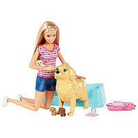 Игровой набор Barbie кукла Барби и Собака с новорожденными щенками FDD43, фото 3