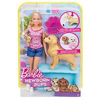 Игровой набор Barbie кукла Барби и Собака с новорожденными щенками FDD43, фото 10