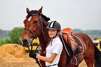 Вводный курс верховой езды на лошади 6 уроков (индивидуальный)