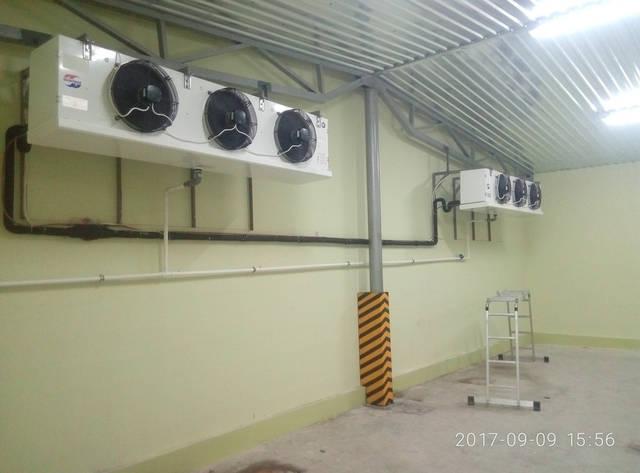 Холодильная камера для хранения пасты! ПАТ ЧУМАК! 2