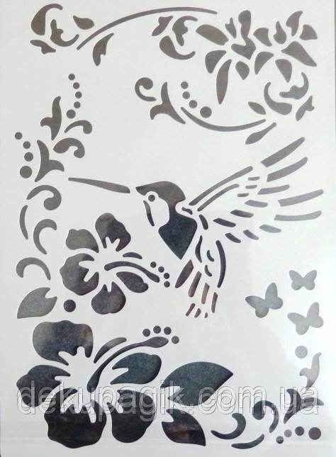 Трафарет универсальный многоразовый Колибри, 21х31см
