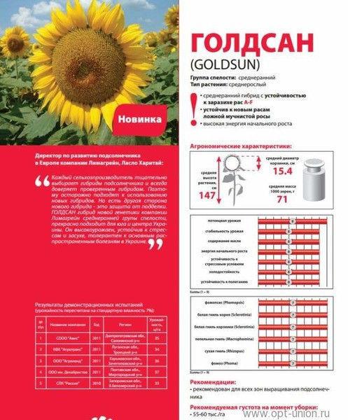Семена подсолнечника Лимагрейн Goldsun 100% оригинал (Limagrain Голдсан)