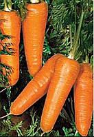 Морква Редко 100,000н. Syngenta