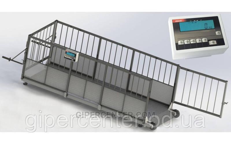 Весы для индивидуального взвешивания свиней 4BDU-600X, НПВ: 600кг, 1500х650х760мм ПРЕМИУМ