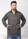 Куртки чоловічі демісезонні