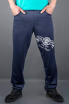 Мужские спортивные штаны Шерон, цвет синий / размерный ряд 50,52