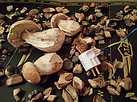 Сушилка для грибов .Фруктов.Трав.( 0.50х1м)