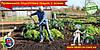 Правильная подготовка грядок с осени. Особенности перекопки. Органические удобрения для огорода.