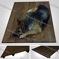 Уличный лежак для собак