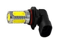 Светодиодная лампа для противотуманных фар и фар ближнего света в качестве DRL CYCLON (LED 9006-4)