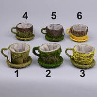 Кашпо чашка с мхом  для декора и флористических композиций