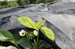 Применение в садоводстве геотекстиля