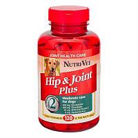 Витамины Нутри-Вет для собак связки и суставы Екстра (2-й уровень) жевательнльные табллетки 120 штук, Nutri-vet 66664