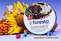Форесто® Ошейник (имидаклоприд 100 мг; флуметрин 45,1 мг/г) против блох для собак (70 см) Bayer