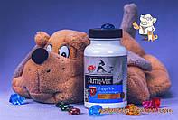 Витамины Нутри-Вет Регуляр для собак связки и суставы (1-й уровень) жевательн. табл. 75шт., Nutri-vet /01271