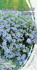 Насіння Квіти Вербена Ампельна Блакитна 0,1 г 217400 Насіння України