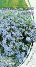 Насіння Квіти Вербена Ампельна Блакитна 0,1 г 217400 Насіння України, фото 2