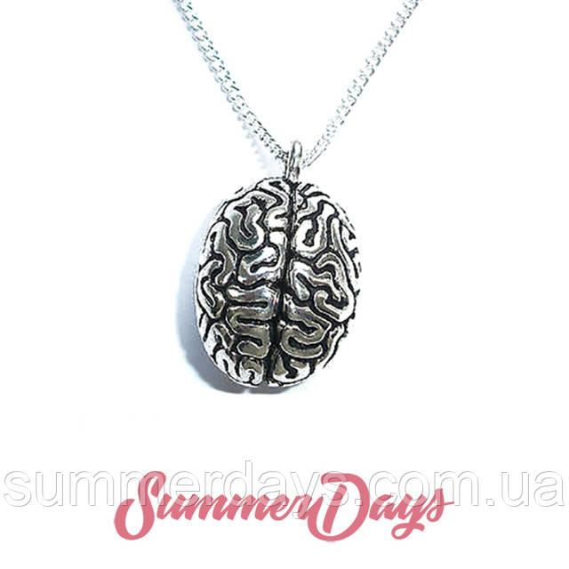 Анатомические кулоны набор мозг