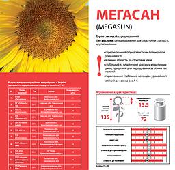 Семена подсолнечника Мегасан Лимагрейн (Limagrain Megasun)