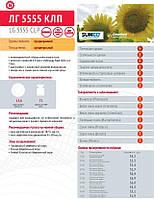 Семена подсолнечника LG 5555 CLP (Лимагрейн)
