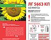 Семена подсолнечника LG 5665 (Лимагрейн)