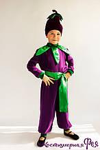 Баклажан, карнавальный костюм (код 81/1)