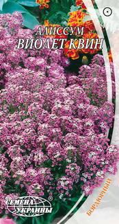 Насіння Квіти Лобуларія Віолет Квін 0,2г Насіння України, фото 2