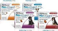 Nexgard Нексгард таблетки для собак от блох и клещей 1 упаковка  от 25 до 50 кг XL