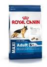 Royal Canin  MAXI ADULT 5+ сухой корм для взрослых собак крупных пород старше 5 лет 15 + подарок