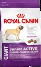 Royal Canin GIANT JUNIOR ACTIVE сухой корм для щенков крупных пород от 8 до 18/24 месяцев 15 кг + подарок