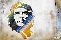 Фреска на гибкой штукатурке Picto - Flex