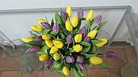 Тюльпан микс, Букет желто-сиреневых тюльпанов 35шт.