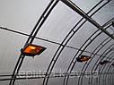 Теплица Эко Топ 6 х 10 м Стандарт 10 мм, фото 4