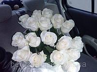 Букет из белых роз 17 шт.