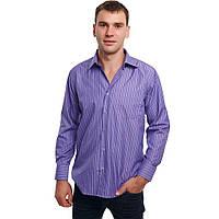 Рубашка мужская батал Boscado ВТТ1108