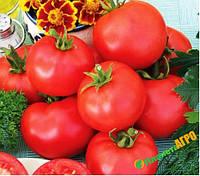 Семена томата низкорослого Баллада,10000 семян, Nasko (Наско), Молдавия