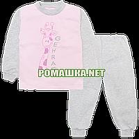 Детская байковая пижама для девочки с начесом р. 92-98 ткань ФУТЕР 100% хлопок ТМ Алекс 3827 Розовый 92