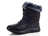 Зимние ботинки на девочек оптом B8557-1 (8пар 36-41)