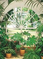 Фотообои на стену Зимний сад, 183х254 см
